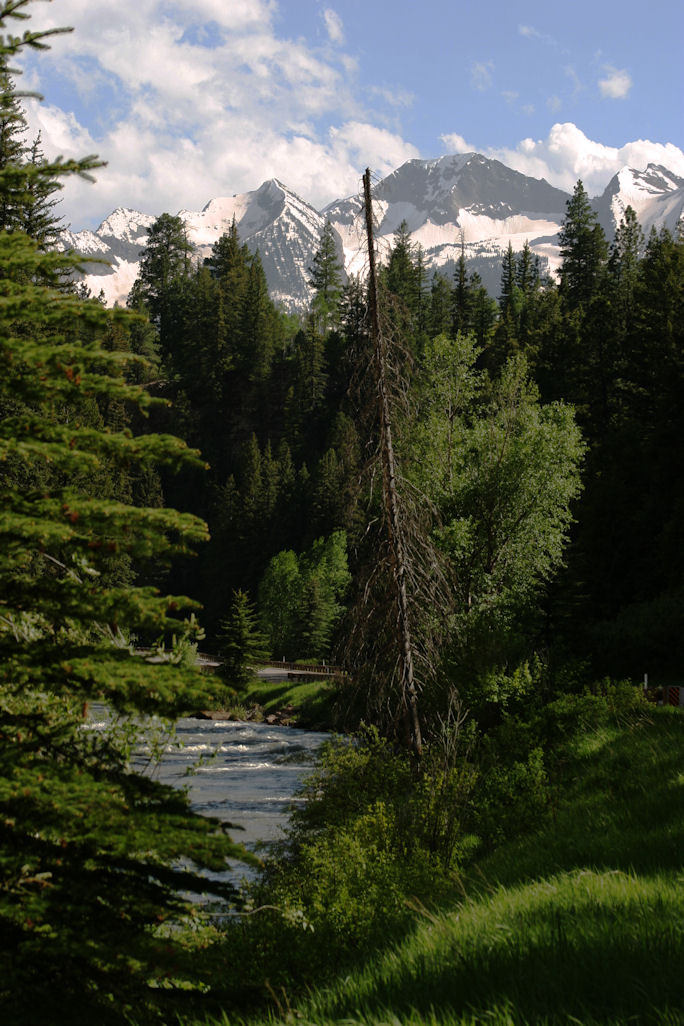 north-of-mcclure-pass