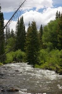 A glance at Bear River