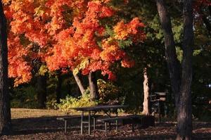 Fall Color at Twin Bridges